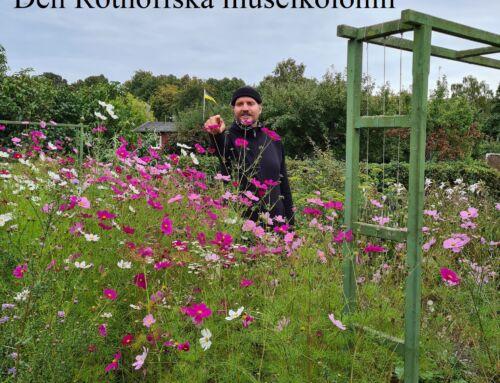 Den Rothoffska museikolonin i Landskrona