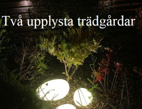 Ljuskvällar i Dalby/Södra Sandby